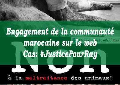 [Analyse Web] Communauté marocaine sur le web – Cas: #JusticePourRay